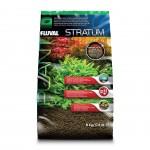 PLANT AND SHRIMP STRATUM