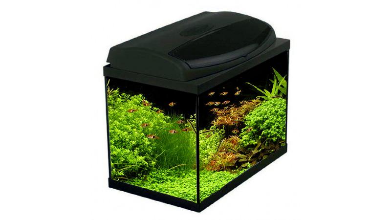 Acvariu AquaEl Classic BOX 40 PROMO